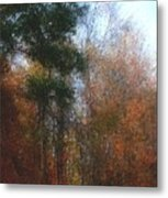 Autumn Scene 10-23-09 Metal Print