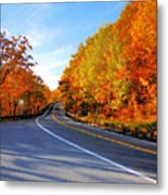 Autumn Scene With Road In Forest 2 Metal Print