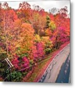 Autumn Season And Color Changing Leaves Season Metal Print