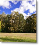 Autumn Skies Metal Print