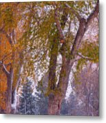 Autumn Snow Park Bench   Metal Print by James BO  Insogna