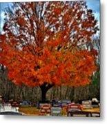 Autumn Somnolence  Metal Print
