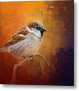 Autumn Sparrow Metal Print