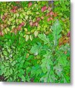 Autumn Splender Metal Print