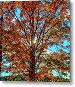 Autumn Star- Paint Metal Print