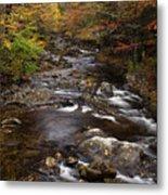 Autumn Stream Metal Print by Andrew Soundarajan