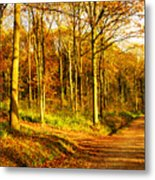 Autumn Metal Print