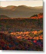 Autumn Tapestry Metal Print by Neil Shapiro