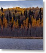 Autumn Tiers Metal Print