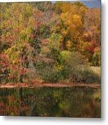 Autumn Tranquility 1 Metal Print