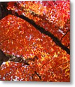 Autumn Tree Art Prints Orange Red Leaves Baslee Troutman Metal Print