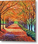 Autumn Tree Lane Metal Print