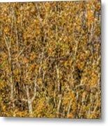 Autumn Tree Tangle Metal Print