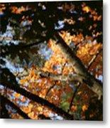 Autumn Trees 2015 Pa 01 Metal Print