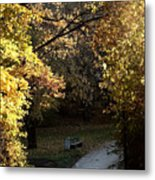 Autumn Trees 3 Metal Print