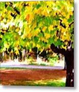 Autumn Trees 6 Metal Print