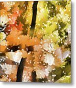 Autumn Trees In The Fog Metal Print