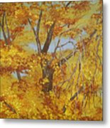 Autumn Treetops Metal Print