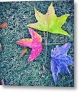 Autumn Trio Metal Print