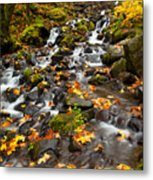 Autumn Tumbles Down Metal Print