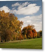 Autumn Under The Sky Metal Print