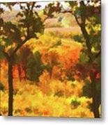 Autumn View, Montelle Winery, Augusta, Missouri Metal Print