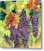 Autumn Vineyard In Its Glory - Batik Style Metal Print