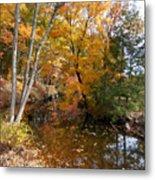 Autumn Vintage Landscape 5 Metal Print