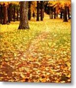 Autumn Walk In Spokane Metal Print