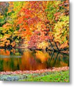 Autumn Warmth Metal Print