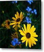 Autumn Wildflowers Metal Print