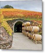 Autumn Wine Cave Metal Print