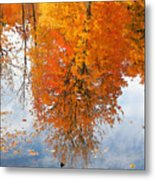Autumn With Colorful Foliage And Water Reflection 19 Metal Print