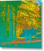 Autumn Woodland Walk Turquoise Metal Print