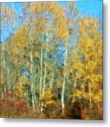 Autumn Woodlot Metal Print