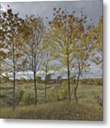 Autumnal Beauty Metal Print