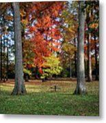 Autumnal Framework Metal Print