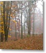 Autumnal Mist Metal Print