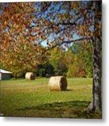 Autumnal Scenery Along Helmstetler Road Metal Print