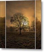Autumnal Triptych. Metal Print