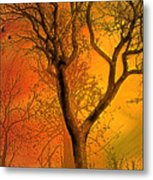 Autumn's Boundry Metal Print