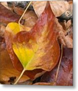 Autumns Color Palette Metal Print