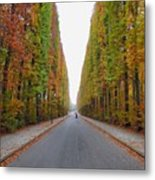 Autumn's Colours Metal Print