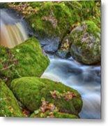 Autumn's Creek 2 Metal Print