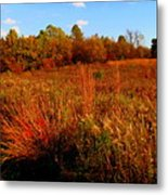 Autumns Field Metal Print