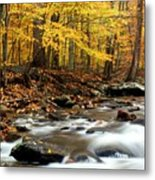 Autumn's Fire Metal Print