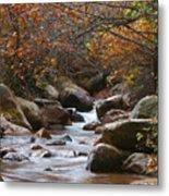 Autumns Flow Metal Print