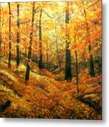 Autumns Hidden Sanctuary Metal Print