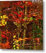 Autumns Looking Glass 2 Metal Print