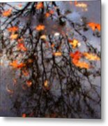 Autumns Looking Glass 3 Metal Print
